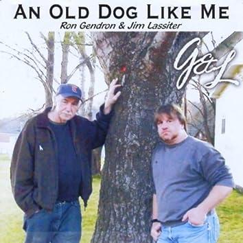 AN OLD DOG LIKE ME