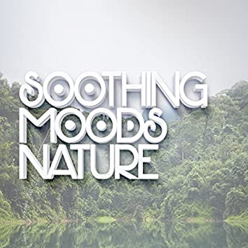 Soothing Moods: Nature