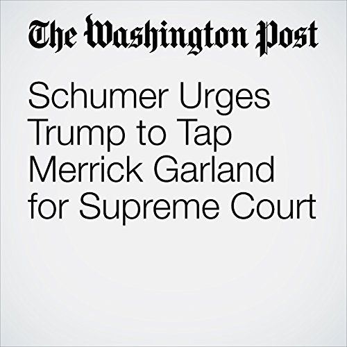 Schumer Urges Trump to Tap Merrick Garland for Supreme Court copertina