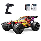 Holyton RC Cars, High Speed Remote Control Car 20 KM/H 2.4GHz 1:22 Scale Buggy, 60 Min Play 2 Batteries, All Terrain, 2WD Off Road Toy Car RC Truck, Toys for Boys Girls, Birthday Gifts