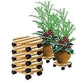 BigDean 5X Pflanzenroller rund Buchenholz massives Holz 30 cm bis 120 Kg Rolluntersetzer