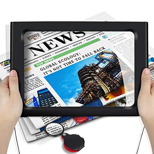 Lupas de Aumento con 12 LED, DIAOCARE Lupa de Lectura para Personas Mayores Ancianos, A4 Rectangular Página Soporte Plegable...