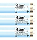 Brilliance Active Bronzer FR71 HO Reflector 100W-120W 7.0% Bi-Pin Tanning Lamp (16)