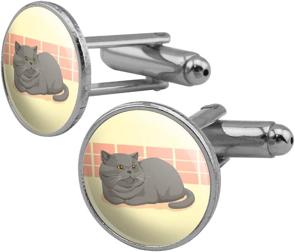 GRAPHICS MORE Chubby British Short Cufflin Round Hair Grey Cat Sale sale
