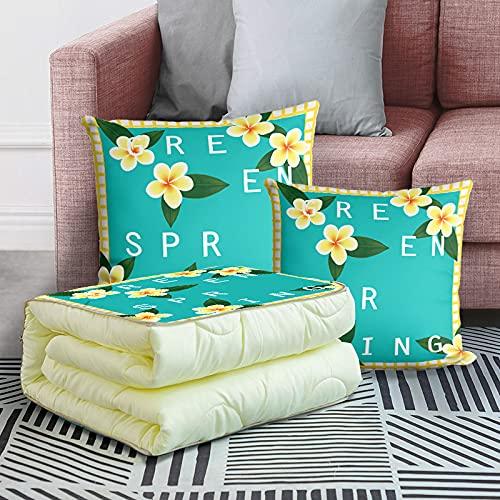 MRBJC Almohadas cómodas y suaves cojines de pelusa holandeses decorativos cuadrados para decoración del hogar, dormitorio, sala de estar, se puede utilizar como colcha de 40 x 40 (100 x 150 cm)