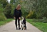Hundeleine von Best Dog | Hundeführleine für große Hunde reflektierend mit Ruckdämpfer – Macht Gassigehen mit dem Vierbeiner-Freund zum Vergnügen, orange-schwarz, 1,50m lang - 5