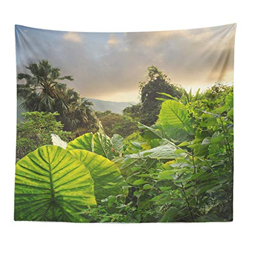 Xmiral Tapisserie Wald Pflanze Landschaft Yogamatte Picknickdecke Wandteppich Wanddeko 150X200cm(S)