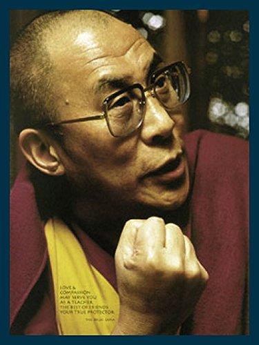Art-Galerie Bild mit Rahmen Liby - Dalai Lama - Holz blau, 48 x 70cm - Premiumqualität - Photografie, Forografie, Modern, People & Eros, Tibet, Dalai Lama - Made IN Germany SHOPde