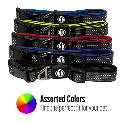Nylon Dog Collar – Reflective – Franklin Pet Supply Co – Comfort Fit – Neoprene – Adjustable – Small – Black