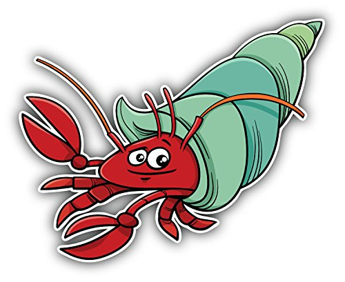 Funny Hermit Crab Cartoon Art Decal Bumper Vinyl Sticker