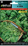 Semillas Aromáticas - Berro de Jardín Alenois Común - Batlle