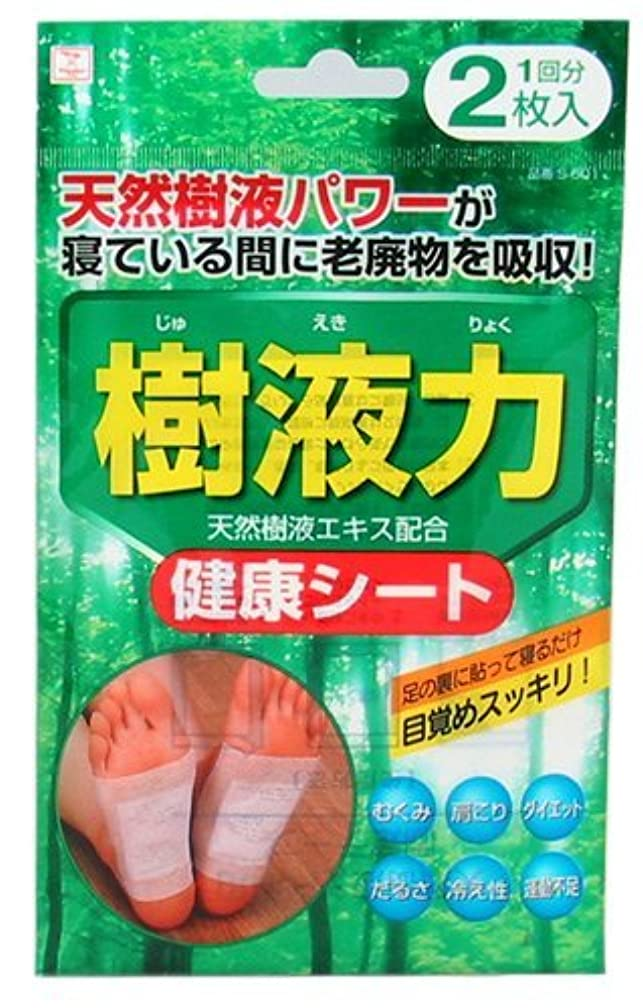 皮余韻小久保(Kokubo) 樹液力 健康シート 2枚入 (台紙)【まとめ買い12個セット】 S-601
