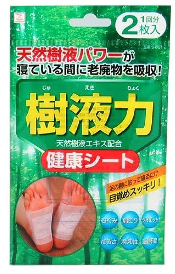 死にかけているぐるぐるカヌー小久保(Kokubo) 樹液力 健康シート 2枚入 (台紙)【まとめ買い12個セット】 S-601