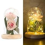 Wovatech Regalo de Flor de Rosa - Kit de Rosas de La Bella y La Bestia con Luces LED de Cadena de...