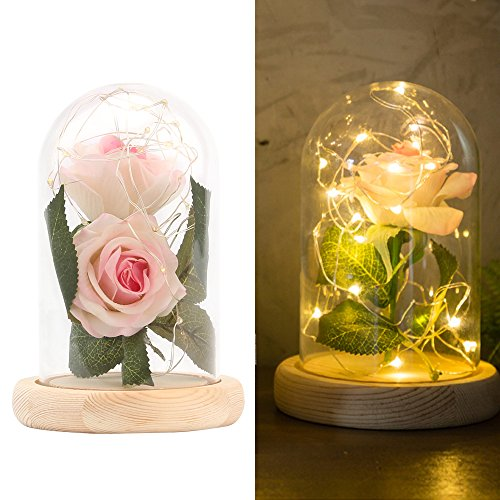 ONEVER 20 LED Strip Licht en 2 STKS Kunstzijde Roze Rose met Glas Lampenkap Warm Wit DIY voor Home Decor Vakantie Project Party Bruiloft Gift
