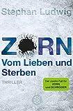 Stephan Ludwig: Zorn. Vom Lieben und Sterben