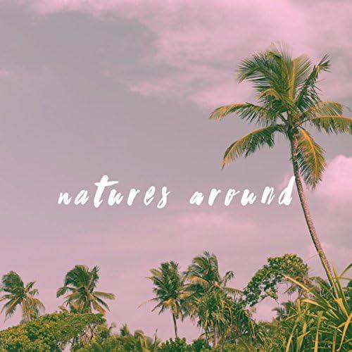 Nature Sounds, Thunderstorm Sleep & Nature Sound Series