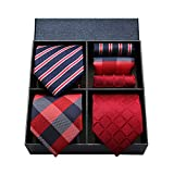 [ HISDERN(ヒスデン) ] ネクタイ 3本セット 結婚式 赤 ネクタイ チーフ メンズ おしゃれ ネクタイセット ビジネス ネクタイ ブランド プレゼント 父の日 T3C008