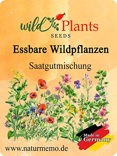 Samenmischung für Essbare Wildpflanzen und Blüten, für ca. 1,5 qm, Stockrose, Kornblume, Ringelblume, Wilde Möhre, wildes Stiefmütterchen, Sauerampfer, uvm. (1)