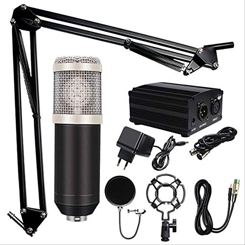 RRYM Microfoons Professionele Karaoke Microfoon Condenser Microfoon Kits Bundel Microfoon Voor Computer Studio Opname B 4