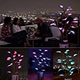 Speaklaus The Magical LED Houseplant Fairy Lamp for Indoor Outdoor Decor, 100/300/500 LED Night Light for Party Decor Home Decor, Artificial Bonsai Tree Lights