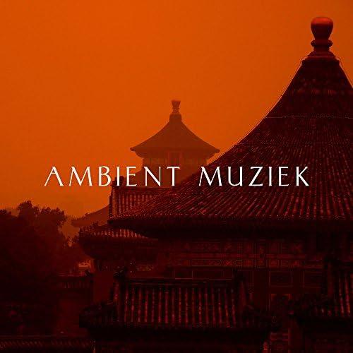 Positief Denken & Mozart Lullabies Baby Lullaby & Newborn Babies Natural White Noise