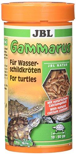 JBL Gammarus 7032200 Ergänzungsfutter für Wasserschildkröten, 1er Pack (1 x 250 ml)