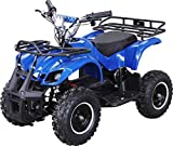 Elektro Kinder Miniquad TORINO 800 Watt ATV Pocket Quad Kinderquad Kinderfahrzeug (Blau)