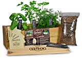 Indoor/Outdoor Herb Garden Kit - Cedar Planter Box with Herb Seeds, Plant Stakes and Expanding Wondersoil -...
