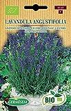Germisem Biologico Lavandula Angustifolia Semi di Lavanda 0.5 g...