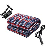 Big Ant Heated Blanket 12V Electric Car Blanket for Car 220V Electric Blankets Comfortable Heating Blanket...