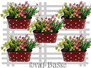 Royal Basket Dotted Oval Railing Planters (RED, Pack of 5)
