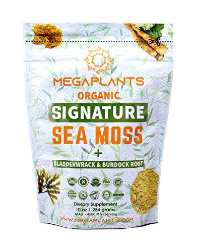 MegaPlants Signature Sea Moss Bladderwrack Burdock Root Powder | 10 Oz | 4500 MG/Serving | 94 Servings | Certified Organic | Wildcrafted | Non GMO | Essential Minerals | Energy + Immune Booster