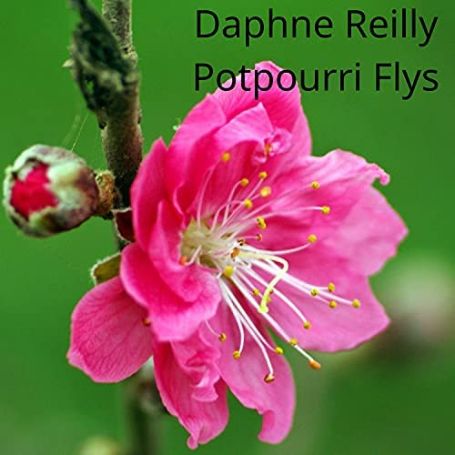 Daphne Reilly