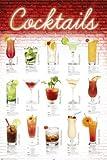 Poster Cocktail Rezepte in deutsch - Größe 61 x 91,5 cm -