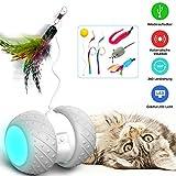 HOFIT Interaktives Elektrischer Katzenspielzeug,Automatischer Drehender Katzenball mit LED-Lichtspielzeug,Katzen Roller Ball Intelligenzspielzeug Für Kätzchen und Hund