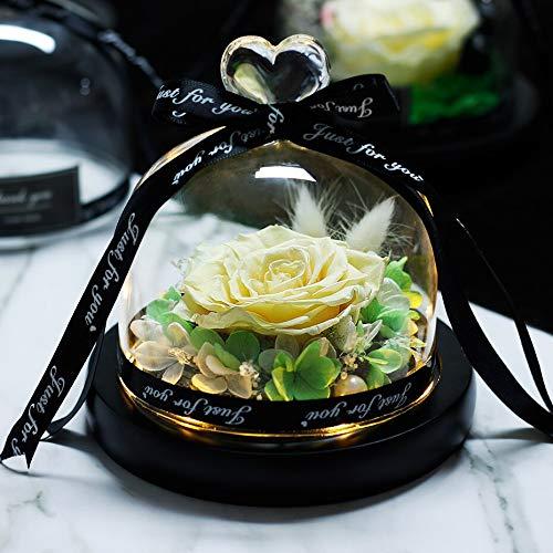 Rosa de la Bella y la Bestia seca en cúpula de cristal de la rosa eterna luz LED Día de la Madre Cumpleaños