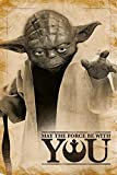 Star Wars Poster Yoda May The Force be with You (61cm x