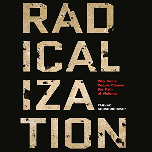 Radicalization audiobook cover art