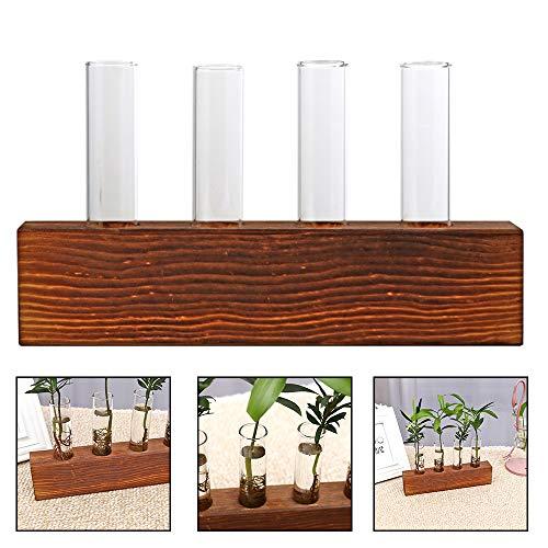 sdomo Wasserpflanze Glasvase, Schreibtisch Pflanzgefäß, Hydrokultur-Vase, Vintage Reagenzglas Vase mit Retro Massivholz Ständer für Hydrokultur, Pflanzen, Zuhause, Garten, Hochzeit, Dekoration