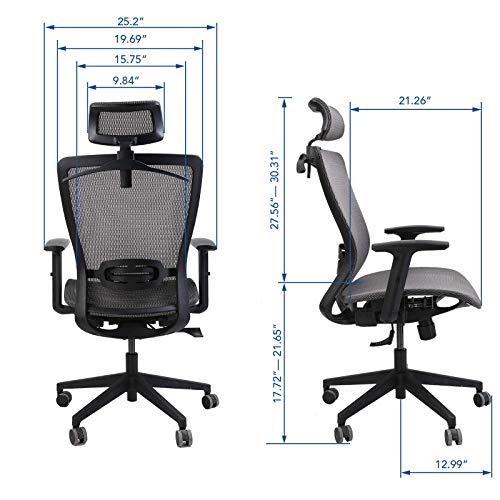 FlexiSpot OC3B Ergonomic Executive Mesh Office Chair Swivel Height Adjustable Seat Headrest Armrest Lumbar Support Caster Wheels Black Mesh Seat Computer Task Chair