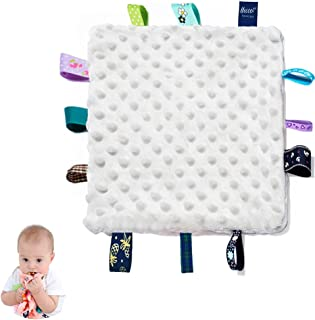 Baby Security Blanket with Colorful Satin Tags, 10 x 10 inches Square Appease Blankets, Plush Sensory Blanket - Soothing B...