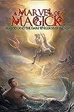 A Marvel Of Magick: Madden and the Dark Unicorns of Danuk (English Edition)