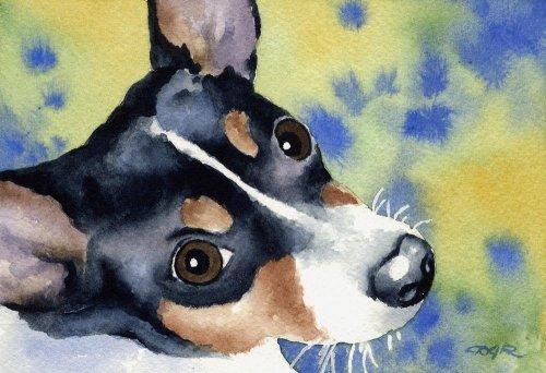 Rat Terrier Dog Art Print by Artist DJ Rogers