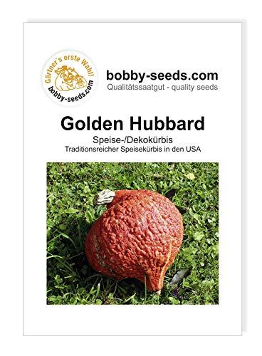 Golden Hubbard Kürbissamen von Bobby-Seeds, Portion