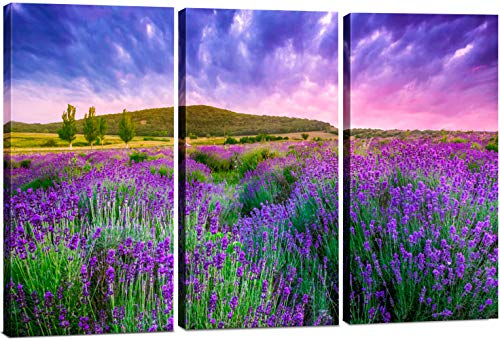 Canvas Wall Art Decor - 12x24 3 Piece Set (Total 24x36 inch) - Purple Flower Field - Decorative & Modern Multi Panel Split Canvas Prints for Dining & Living Room, Kitchen, Bedroom, Bathroom & Office