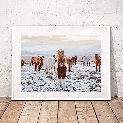 Arte de pared lienzo póster impresión desierto decoración de pared caballo fotografía paisaje arte pintura cuadro decoración del hogar 60x90 CM (sin marco)