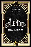 The Splendor (English Edition)