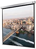 celexon manuell ausziehbare Heimkino- und Business-Rollo-Beamer-Leinwand 4K und Full-HD mit...