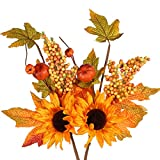 NAHUAA 2PCS Artificial Fall Maple Flowers Bundles Fake Silk Sunflowers Bouquets with Fake Pumpkins for Home Office Yard Indoor Outdoor Thanksgiving Harvest Halloween Display Decoration